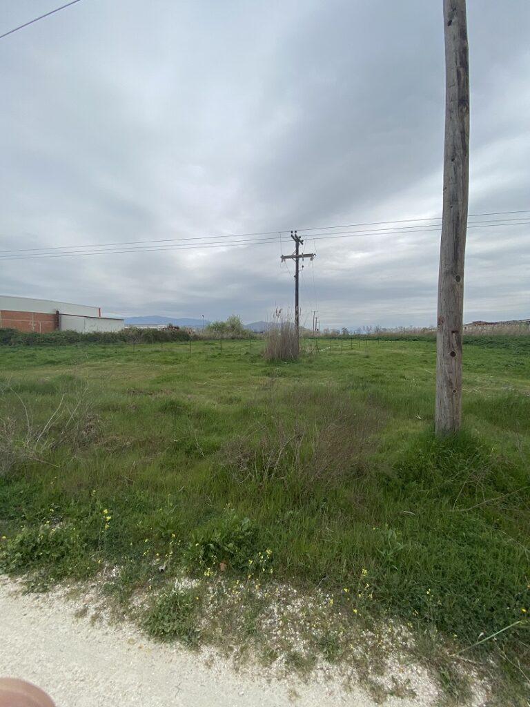 Αγροτεμάχιο, προς πώληση 6.500 τ.μ. στο Κουλούρι Λάρισας 30.000 €